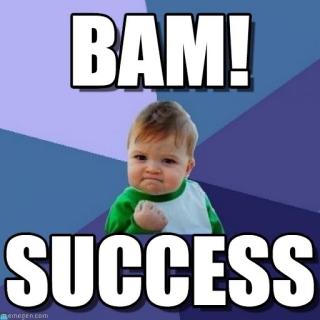success meme